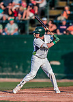 20 August 2017: Vermont Lake Monsters outfielder Greg Deichmann, a 2nd round draft pick for the Oakland Athletics, in action against the Connecticut Tigers at Centennial Field in Burlington, Vermont. The Lake Monsters rallied to edge out the Tigers 6-5 in 13 innings of NY Penn League action.  Mandatory Credit: Ed Wolfstein Photo *** RAW (NEF) Image File Available ***
