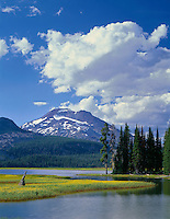 ORCAC_079 - USA, Oregon, Deschutes National Forest, Leafy arnica blooms on an island in Sparks Lake with South Sister rising in the distance.