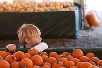 2009 Melrose Leadership Pumpkin Patch Field Trip