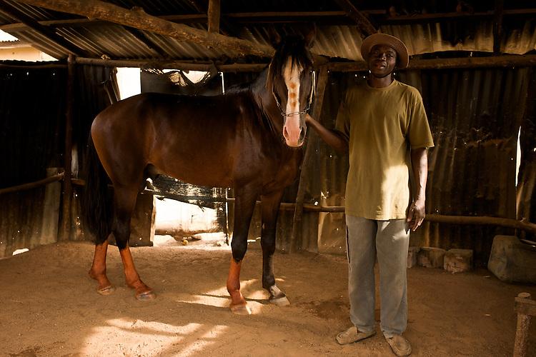 Rafiou Owoni-Fari with his horse, a &quot;Danda&quot;. Dandas have a white stripe on the forehead. The horsemen often taint the white parts of a horse with a vegetal dye, similar to Henna.<br />  <br /> Rafiou Owoni-Fari avec son cheval, un &laquo;Danda&raquo;. Les Danda ont une t&acirc;che blanche sur le front. Les parties claires du cheval sont souvent teint&eacute;s avec une teinture v&eacute;g&eacute;tale similaire au Henn&eacute;.