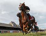 Voodoo Song (no. 1) first time by as Qurbaan (no. 6) wins the Bernard Baruch Handicap (Grade 2), Sep. 3, 2018 at the Saratoga Race Course, Saratoga Springs, NY.  Ridden by Irad Ortiz, Jr., and trained by Kiaran McLaughlin, Qurbaan finished  a nose in front of Forge (no. 3) and Projected (no. 2) in a three horse photo finish.  (Bruce Dudek/Eclipse Sportswire)