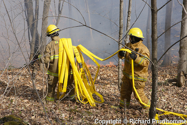 Two firemen are carrying fire hose in the forest to extinguish  a forest fire
