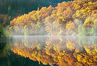 Reflection in Lake Britton with fall colored trees. California