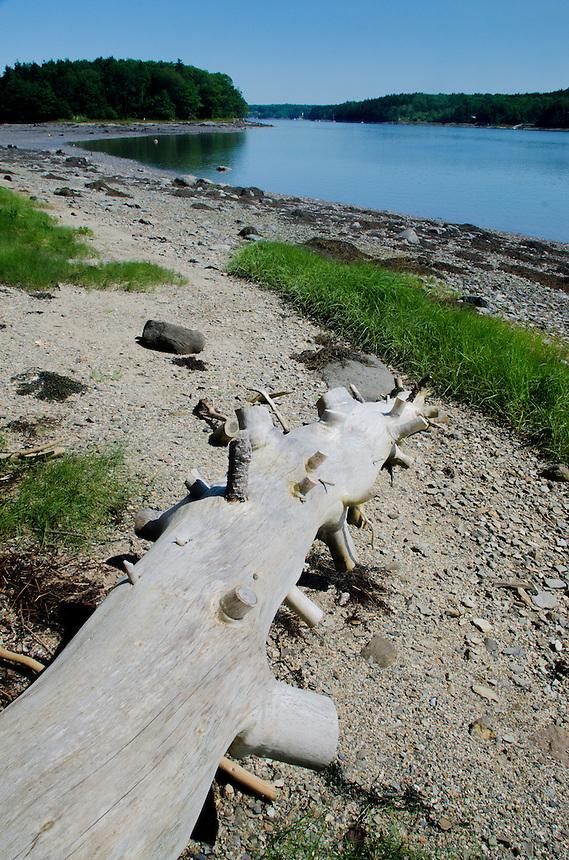 Lower Negro Island, Castine, Maine, US