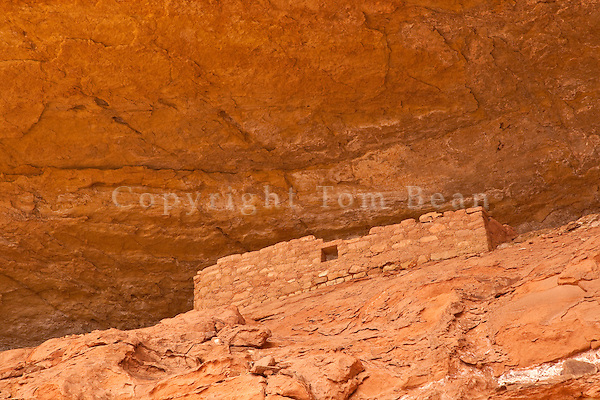 Ancient Puebloan cliff dwelling in rock alcove along the Sand Canyon Trail in Canyons of the Ancients National Monument, west of Cortez, Colorado, AGPix_1898