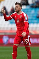 17th November 2019; Stadion Rajko Mitic, Belgrade, Serbia; European Championships 2020 Qualifier, Serbia versus Ukraine; Adem Ljajic of Serbia gestures - Editorial Use