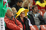 Dejected Welsh Fans<br /> Dove Men Series 2014<br /> Wales v Fiji<br /> Millennium Stadium<br /> 15.11.14<br /> ©Steve Pope-SPORTINGWALES
