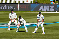 Ross Taylor, Tom Latham and Tim Southee of the Black Caps during Day 3 of the Second International Cricket Test match, New Zealand V England, Hagley Oval, Christchurch, New Zealand, 1st April 2018.Copyright photo: John Davidson / www.photosport.nz