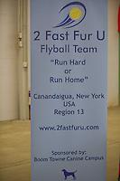 2 Fast Fur U
