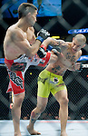 Ricardo Lamas, red trunks, and Cub Swanson battle in a featherweight match during Saturday's UFC on Fox event at the Honda Center.
