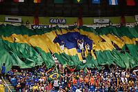 SAO PAULO, SP, 03.05.2015 - WORLD CHALLENGE CUP BRAZIL - Publico hasteia a bandeira brasileira após a vitoria de Arthur Zanetti  na modalidade argolas  durante a final Copa do Mundo de Ginástica Artística no Ginásio do Ibirapuera na região sul de São Paulo, neste domingo (03). (Foto: Adriana Spaca / Brazil Photo Press)