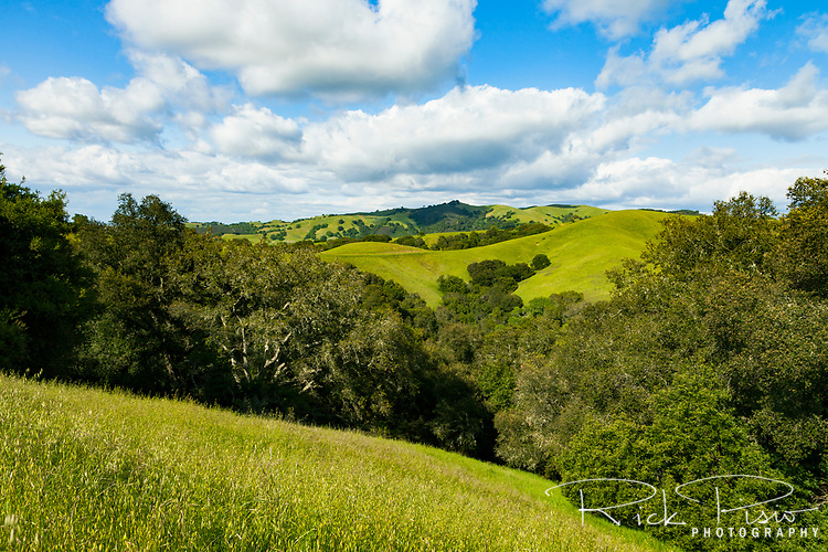 Rolling hillsides of Morgan Territory Regional Preserve, an East Bay Regional Park located in California's Contra Costa County.