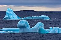Icebergs at dusk  on Bonavista Peninsula. Atlantic Ocean.<br />Bonavista<br />Newfoundland & Labrador<br />Canada