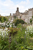White summer border at Haddon Hall with house behind