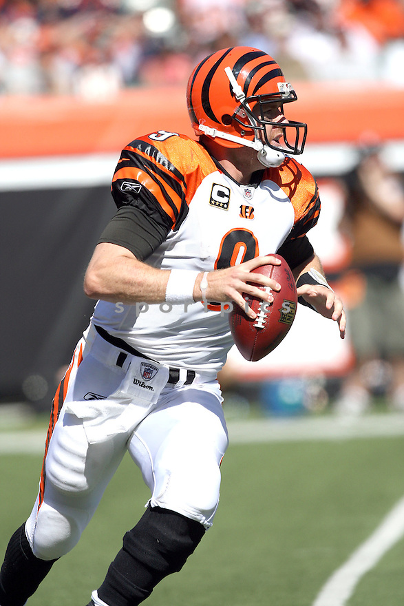 CARSON PALMER,of the Cincinnati Bengals, in actions during the Bengals  game against the Denver Broncos  on September 13, 2009 in Cincinnati, OH  The Broncos beat the Bengals 12-7.