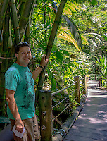 A tourist stands near bamboo on the boardwalk at Hawaii Tropical Botanical Garden, Papa'ikou, Big Island of Hawaiʻi.