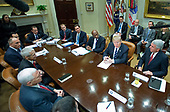 "United States President Donald Trump meets with representatives from PhRMA, the Pharmaceutical Research and Manufacturers of America in the in the Oval Office Roosevelt Room of the White House in Washington, DC on Tuesday, January 31, 2017.  According to its website PhRMA ""represents the country's leading biopharmaceutical researchers and biotechnology companies."" <br /> Credit: Ron Sachs / Pool via CNP"