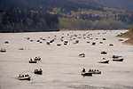 Salmon fishermen in boats across Columbia River just below Bonneville Dam; Oregon.