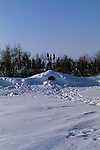 a polar bear den in a snow bank.