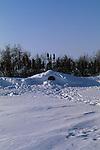 a polar bear den in a snow bank.