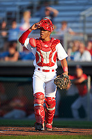 Auburn Doubledays catcher Luis Vilorio (4) during a game against the Williamsport Crosscutters on June 25, 2016 at Falcon Park in Auburn, New York.  Auburn defeated Williamsport 5-4.  (Mike Janes/Four Seam Images)