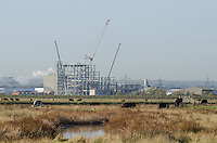 Construction Seen from Elmley Nature Reserve
