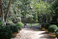 Trimmed privet hedges in tubs line the gravel drive from the wrought-iron gates to the house