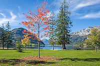 Austria; Styria; Styrian Salzkammergut; Ausseer Land, Goessl at Grundl Lake: autumn scene, in the background lakeshore Villa Roth (also called Castle Grundlsee) | Oesterreich, Steiermark, Steirisches Salzkammergut, Ausseer Land, Goessl am Grundlsee: Herbststimmung, am Seeufer die Villa Roth auch Schloss Grundlsee genannt