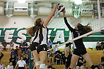 2013 girls volleyball: St. Francis High School