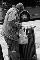 Seen on the streets of downtown Chicago bundled up against the cold and searching refuse bins for something to eat early spring 2011.