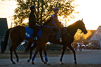 during morning workouts for the Kentucky Derby at Churchill Downs in Louisville, Kentucky on April 30, 2013.