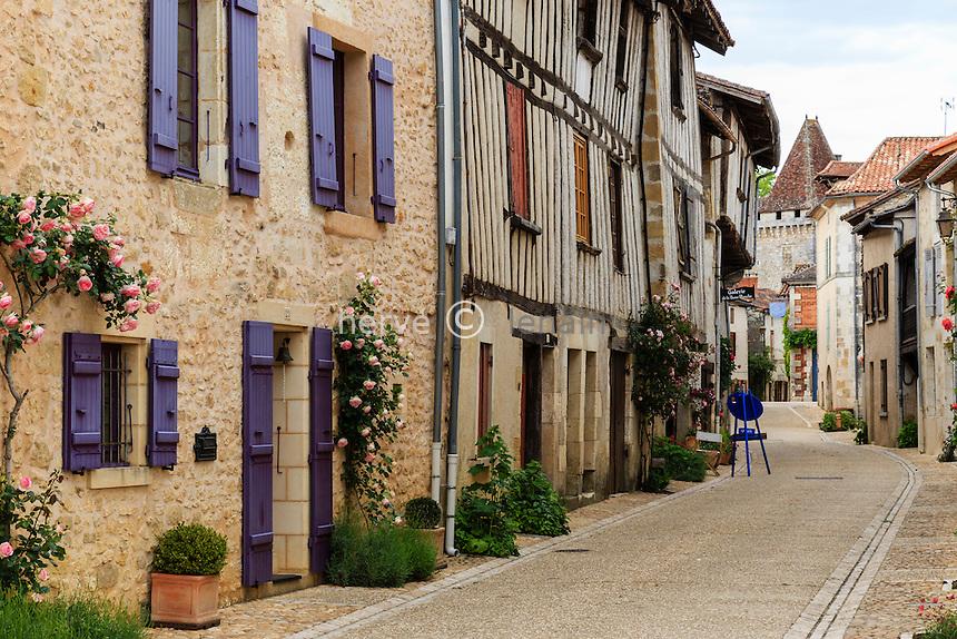 France, Dordogne (24), Saint-Jean-de-Côle, labellisé Les Plus Beaux Villages de France, la rue du Château