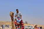 An Egyptian man rides a camel in front of the Giza pyramids, on the third day of Eid al-Fitr holiday which marks the end of the Muslim holy month of Ramadan, in Cairo June 27, 2017. Photo by Amr Sayed