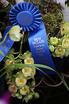 Deep Cut Orchid Society Annual Orchid Show at Dearborn Market
