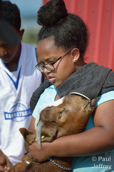 Sara Goitom, a resettled refugee from Eritrea, braces her goat on a farm in Linville, Virginia, on July 17, 2017. Goitom and other refugee youth, resettled in the area by Church World Service, are preparing to show sheep and goats in a county fair.<br /> <br /> Photo by Paul Jeffrey for Church World Service.