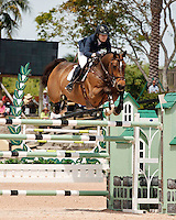 Nemo 119 ridden by Lucy Davis,  USEF trials#2 Wellington Florida. 3-22-2012