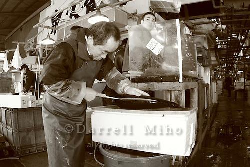 Mar 4, 2006; Tokyo, JPN; Tsukiji.Cutting fish at the Tsukiji Fish Market...Photo credit: Darrell Miho