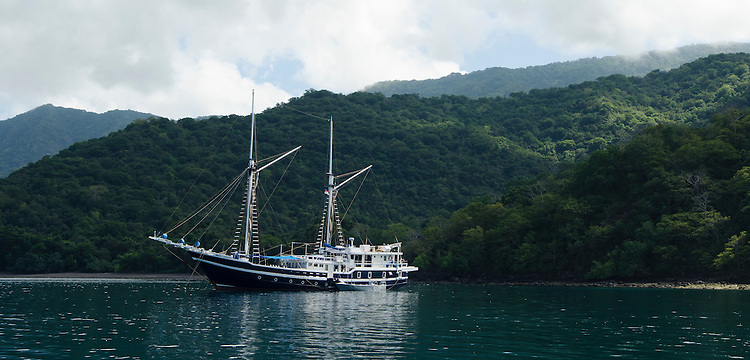 The MSY Seahorse in Horseshoe Bay, South Komodo
