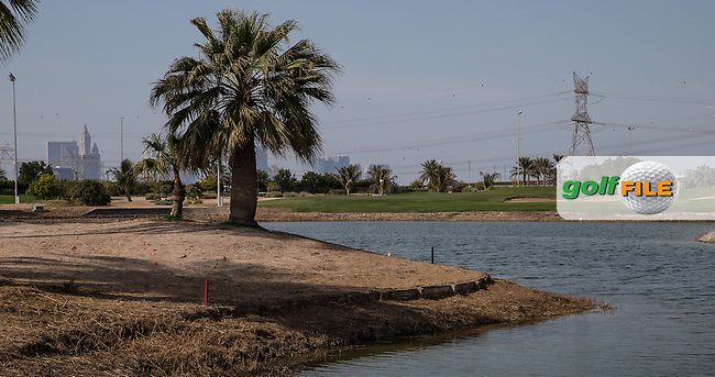9th approach over pond, The Track at The Meydan Golf Club, Dubai, United Arab Emirates.  31/01/2016. Picture: Golffile | David Lloyd<br /> <br /> All photos usage must carry mandatory copyright credit (&copy; Golffile | David Lloyd)