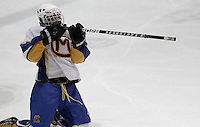 Zachary Swink #2 of Canon-McMillan celebrates after scoring a goal against Norwin during their quarterfinal game at Southepointe Iceoplex on March 16, 2012 in Canonsburg, PA...(Jared Wickerham/For The Tribune-Review).JW Norwin-CMhockey317.jpg.