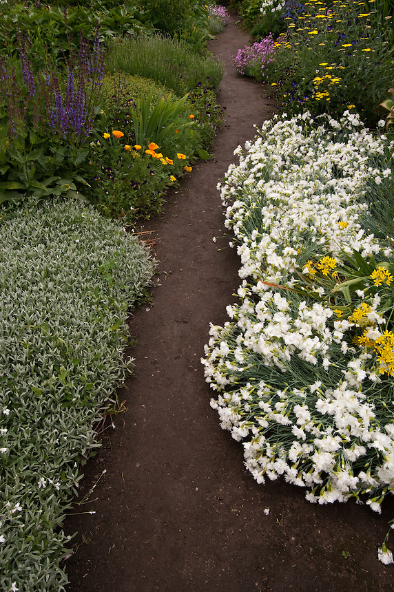 Blossoming flowers spill over onto a garden path in June.