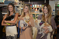 LOS ANGELES, CA - OCTOBER 18: Katie Cleary, Joanna Krupa, Simone Reyes at a press conference to celebrate the passing of Bill 485 banning the selling of pets in retail outlets at the Healthy Spot in Los Angeles, California on October 18, 2017. Credit: David Edwards/MediaPunch /NortePhoto.com