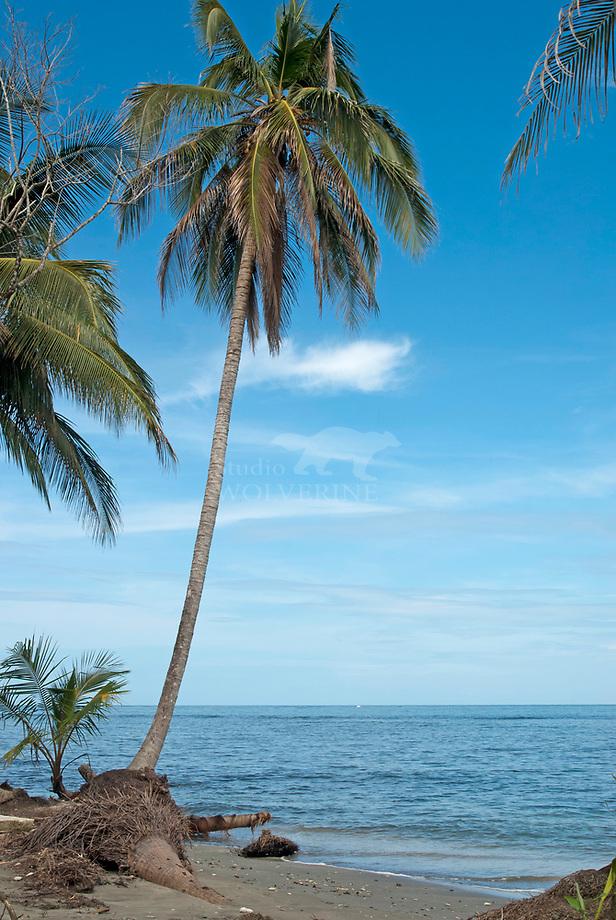 Caribische kust, Cahiuta National Park, Costa Rica