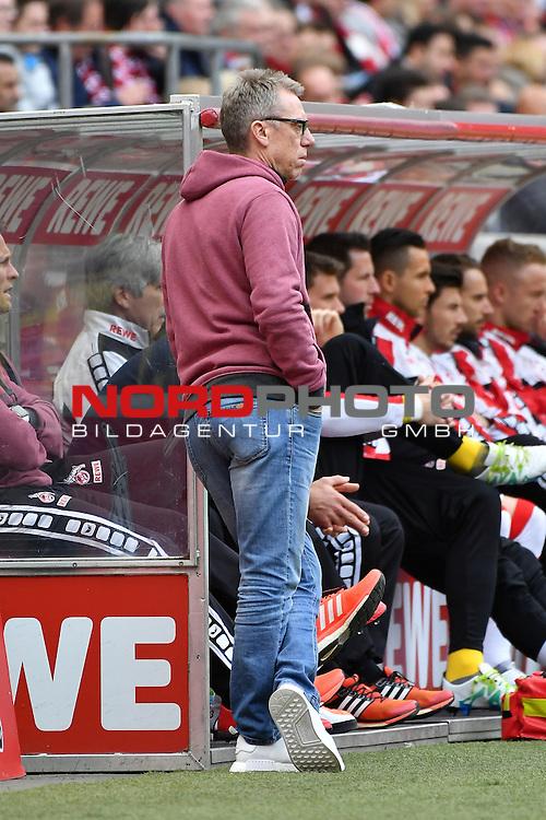 23.04.2016, RheinEnergie Stadion, Koeln, GER, 1.FBL,  1. FC Koeln vs SV Darmstadt 98<br /> im Bild / picture shows: <br /> Peter St&ouml;ger / Stoeger (Trainer Koeln)<br /> <br /> <br /> <br /> Foto &copy; nordphoto / meuter