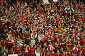 January 5th, 2008:  Rutgers fans celebrate during the fourth quarter of the International Bowl at the Rogers Centre in Toronto, Ontario Canada...Rutgers defeated Ball State 52-30.  ..Photo By:  Mike Janes Photography
