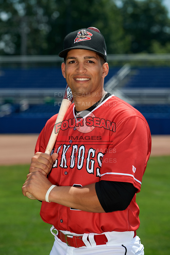 Batavia Muckdogs Igor Baez (29) poses for a photo on July 2, 2018 at Dwyer Stadium in Batavia, New York.  (Mike Janes/Four Seam Images)