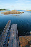 Lowcountry dock flood tide south carolina James island