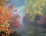 misty autumn creek in The Washington Cascades