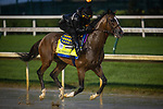 September 3, 2020:  Authentic exercises as horses prepare for the 2020 Kentucky Derby and Kentucky Oaks at Churchill Downs in Louisville, Kentucky. The race is being run without fans due to the coronavirus pandemic that has gripped the world and nation for much of the year. Evers/Eclipse Sportswire/CSM