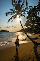 Mirissa Beach, tourist under a palm tree at sunset, South Coast of Sri Lanka, Southern Province, Asia. This is a photo of a tourist walking under a palm tree at sunset on Mirissa Beach, Sri Lanka, Asia. Mirissa Beach, a palm tree lined beach on the South Coast of Sri Lanka is one of the most popular tourist beaches and is host to many a beautiful sunset.